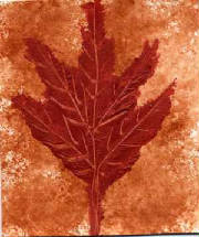 ATC_brown_copper_leaf_on_brown_copper.JPG